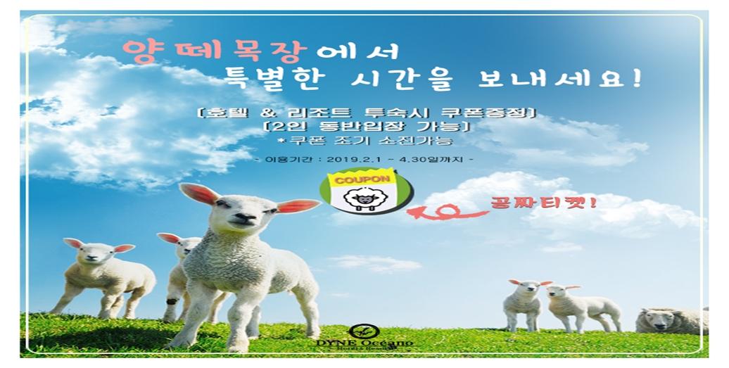 양때목장 쿠폰제공